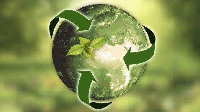 cos-e-la-sostenibilita